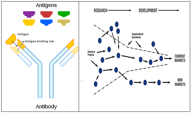 Antibodies and Managing Open Innovation