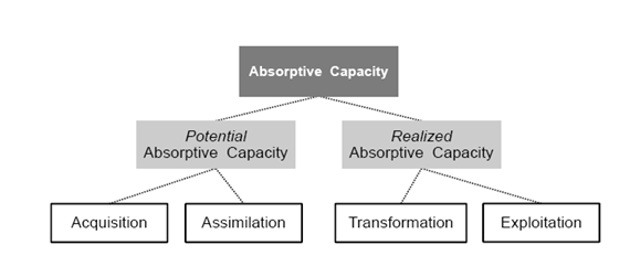 The Absorptive Capacity Components