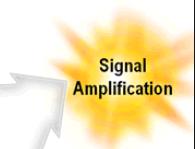 Signal Amplification