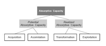 Adoptive Capoacity Steps 1