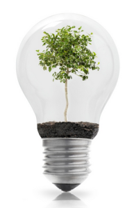 Fostering the Environment for Innovation 1