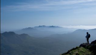IFD Mountain View