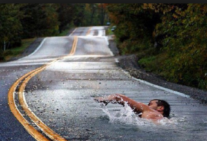 swimming-along-the-transformational-road